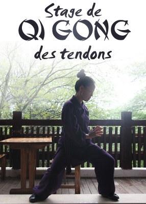Stage de Qi Gong des Tendons (Yi Jin Jing)