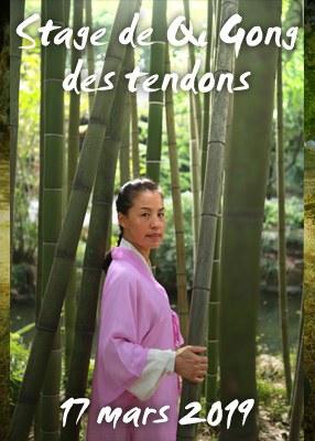 Stage de Qi Gong des Tendons/Yi Jin Jing