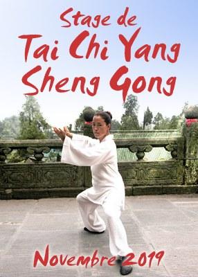 Stage de Tai Chi Yang Sheng Gong