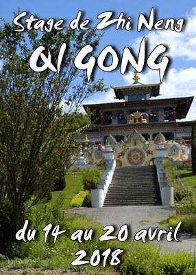 Stage résidentiel de Zhi Neng Qi Gong printemps 2018