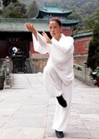 Stage de Qi Gong des 5 Animaux<br>(tigre, cerf, ours, singe et oiseau)