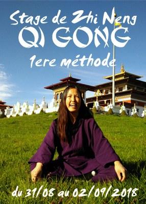Stage de Zhi Neng Qi Gong 1ère Méthode