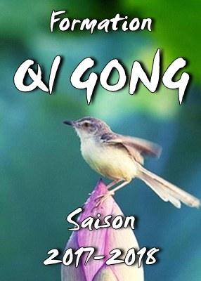 Formation Qi Gong 1ère année