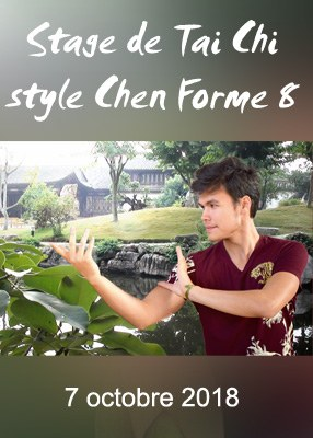 Stage de Tai Chi style Chen Forme 8
