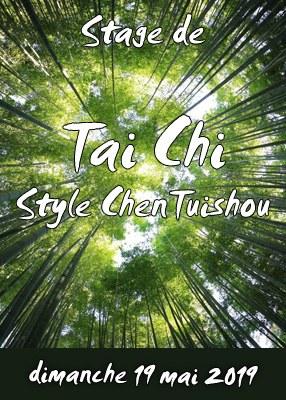 Stage de Tai Chi style Chen Tuishou et Zhanzhuang
