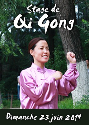 Stage de Qi Gong des 5 Animaux Wu Qin Xi juin 2018