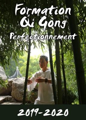 Formation en Qi Gong Perfectionnement
