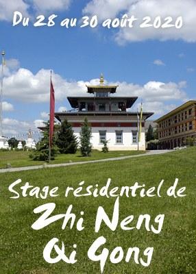 Stage résidentiel de Zhi Neng Qi Gong