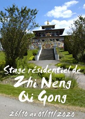 Stage résidentiel de Zhi Neng Qi Gong avec le Professeur Xu